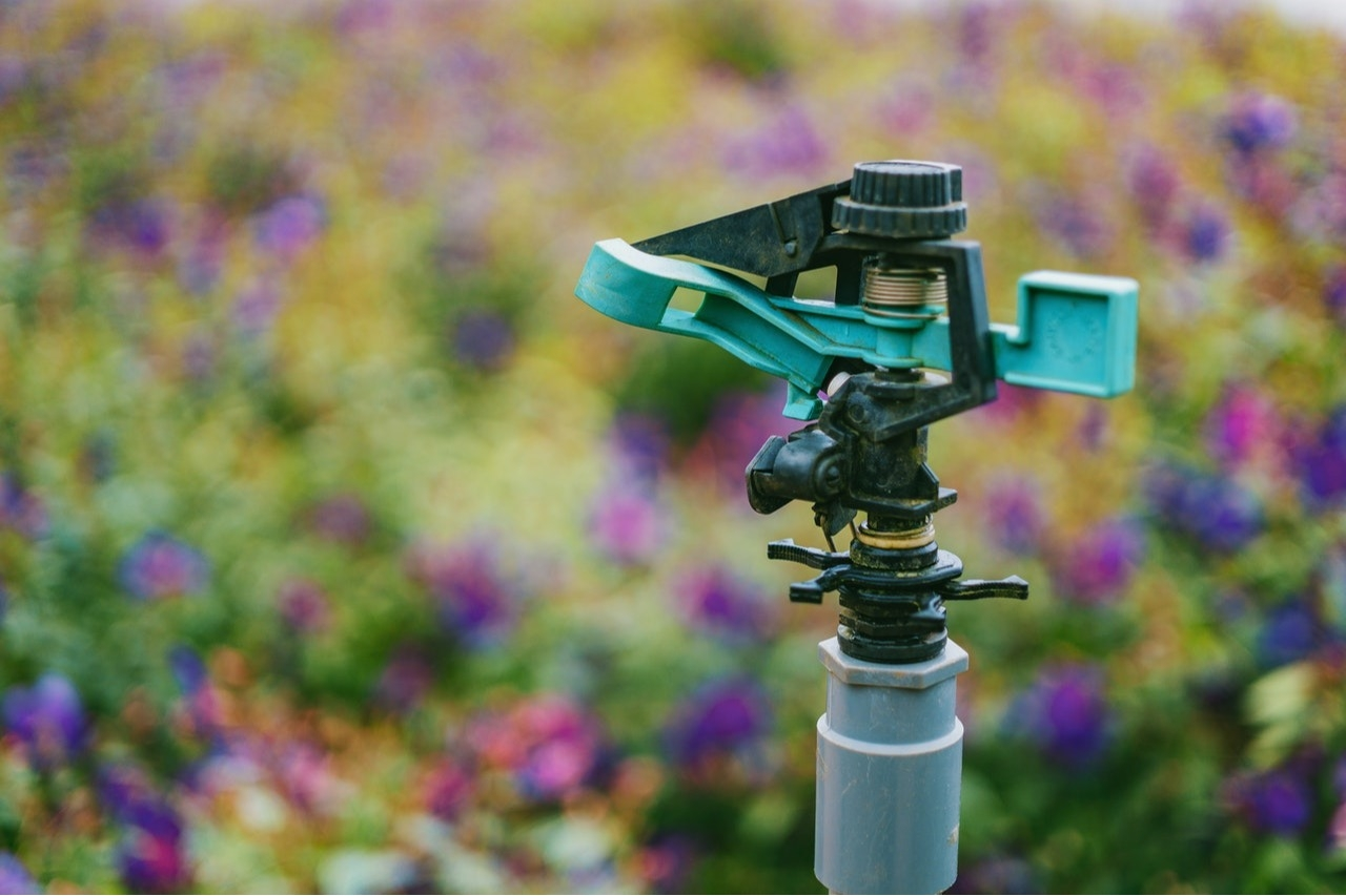 What You Need to Know About Residential Irrigation Systems for the Front Range