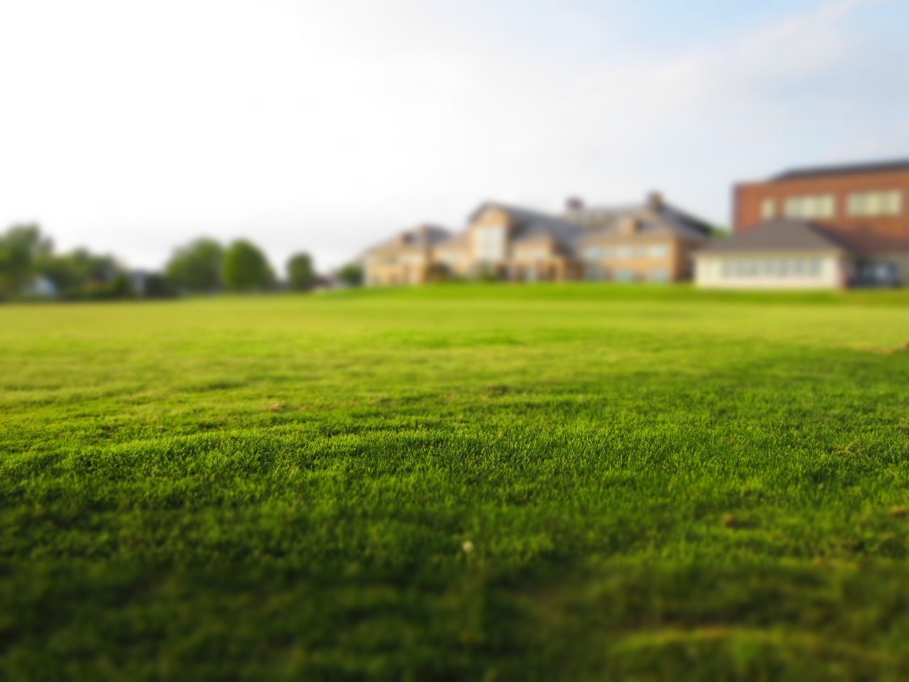 Denver Landscape Design Company Tells Homeowners When to Aerate Their Lawns